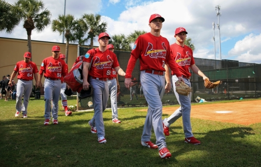 MLB: St. Louis Cardinals-Workouts